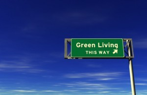 Green cremation? This way!