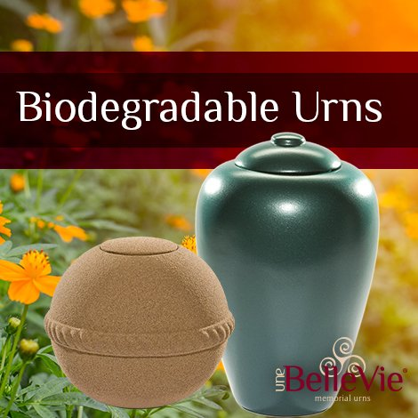 burying-ashes-biodegradable-urns