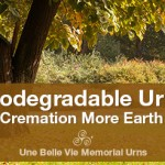 Biodegradable Cremation Urns