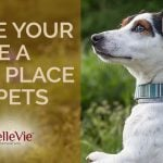 How To Make Your Home A Safe Place For Pets